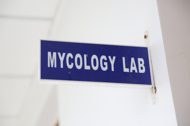Mycology Lab
